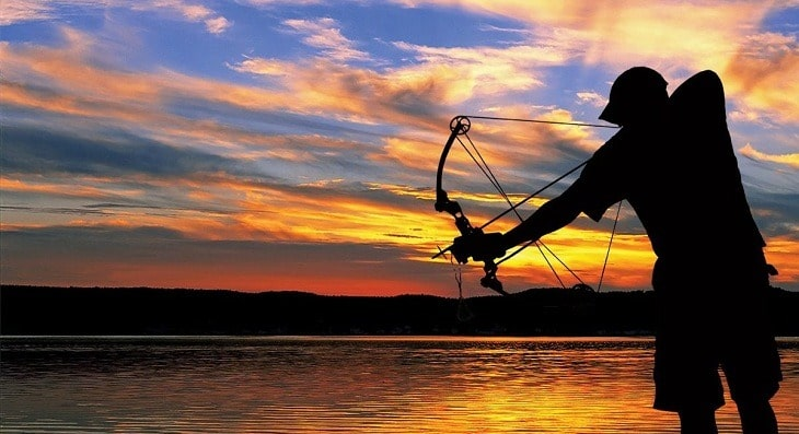 How to Buy the Best Bowfishing Bow