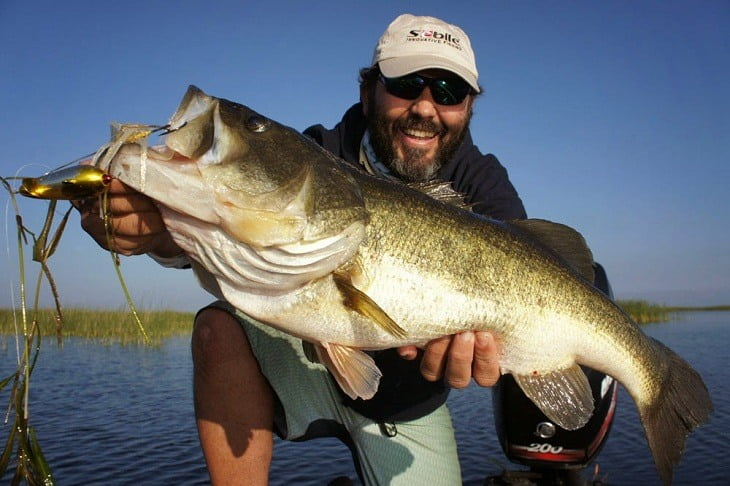 How to Buy Bass Lures