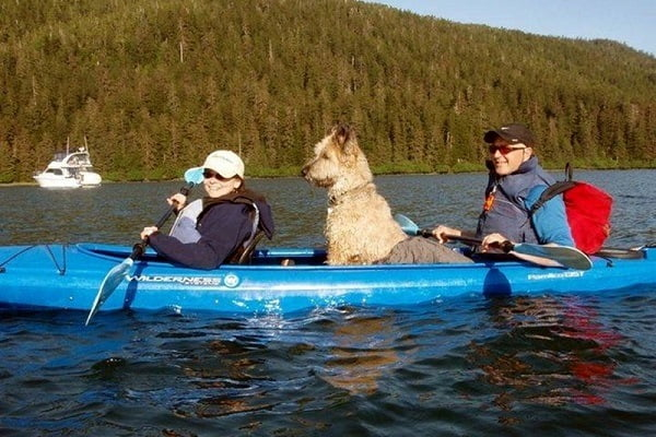 How to Buy a Kayak for Dogs