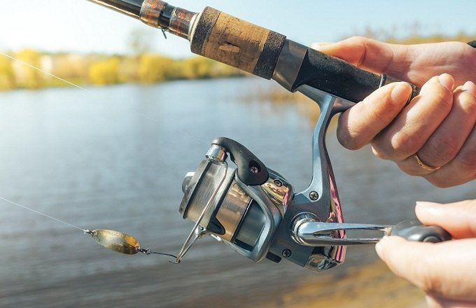 Best Spinning Reel for Bass