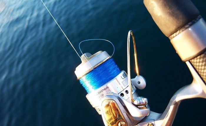 How to Buy the Best Monofilament Fishing Line