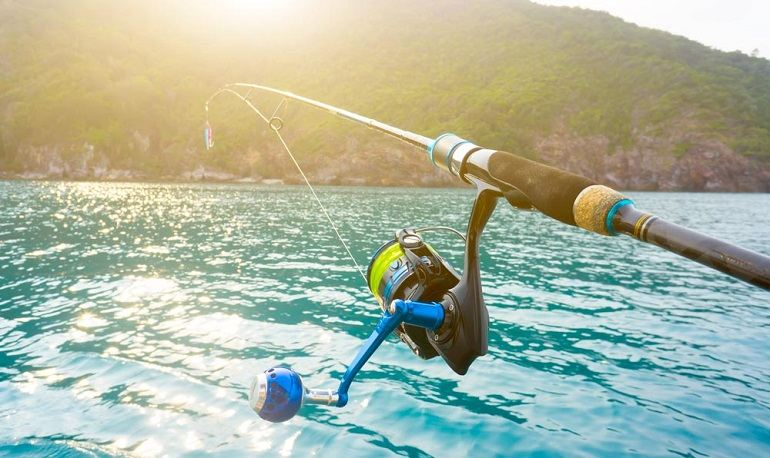 How to Buy the Best Shimano Spinning Reel