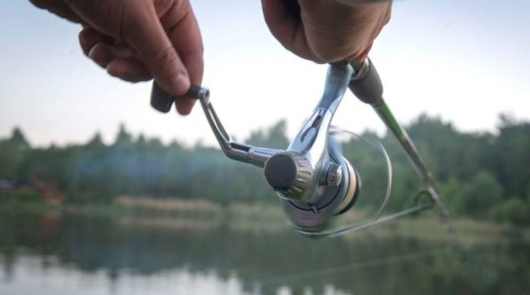 How to Buy the Best Spinning Reel for Bass