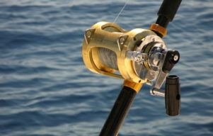 Best Saltwater Spinning Reels