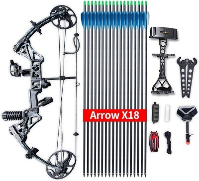 Compound Bow Topoint