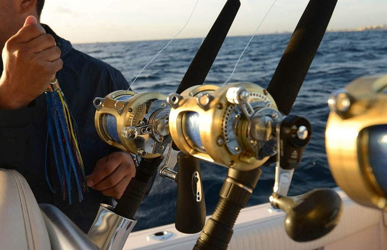 How to Buy the Best Saltwater Spinning Reels